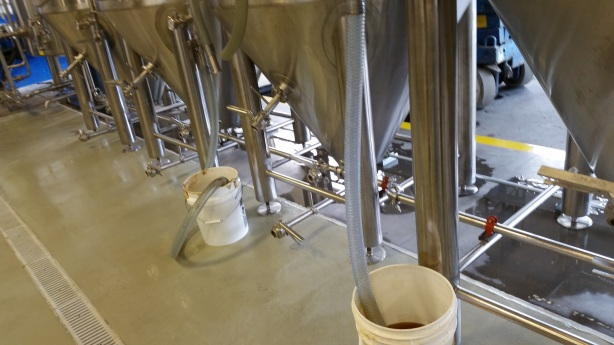 The stainless steel piping underneath the fermenters means no more tripping on hoses.