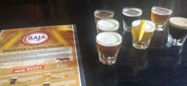 Craft beers are starting to crop up in Baja California.