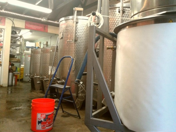 Kaktus hopes to increase their brewing output in 2017.